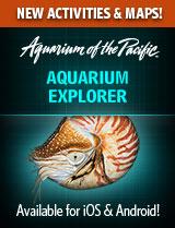 Aquarium Explorer App