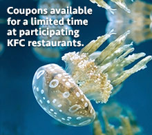 Coupons at KFC