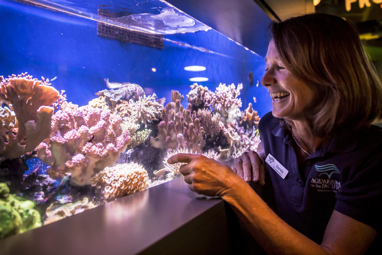 Sandy Trautwein, Curator of Fish and Inverterbates