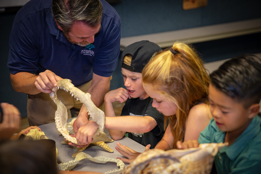 Instructor showing boy and girl shark jaw