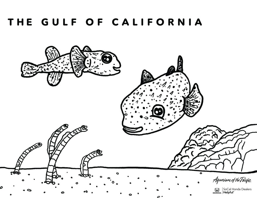 Octopus and Pufferfish coloring page | Free Printable Coloring Pages | 680x880
