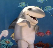 Shark costumed character