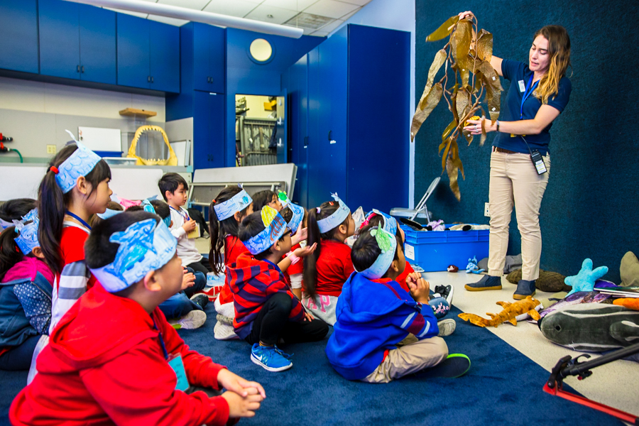 Educator in classroom holding kelp