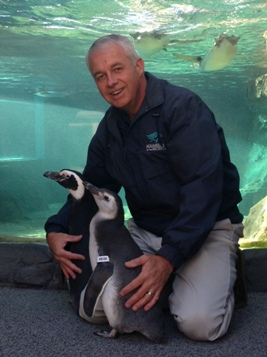 Perry Hampton with penguins
