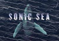 Sonic Sea: Film Screening