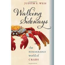Walking Sideways book cover image