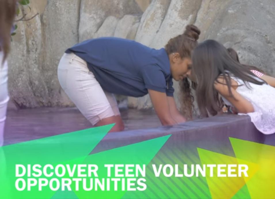 Discover Teen Volunteer Opportunities