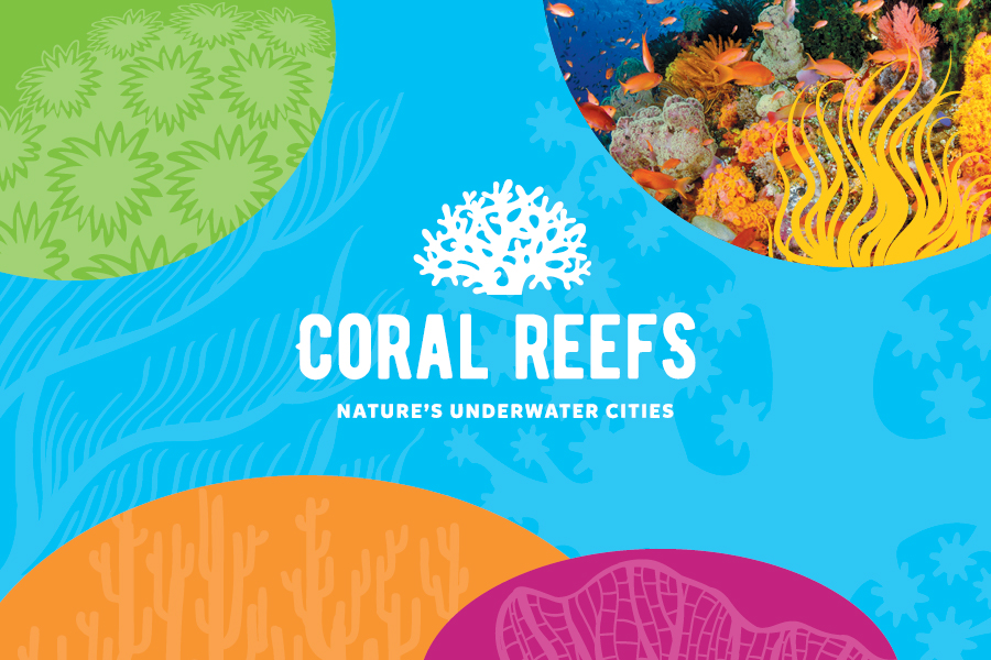 Coral Reefs: Nature
