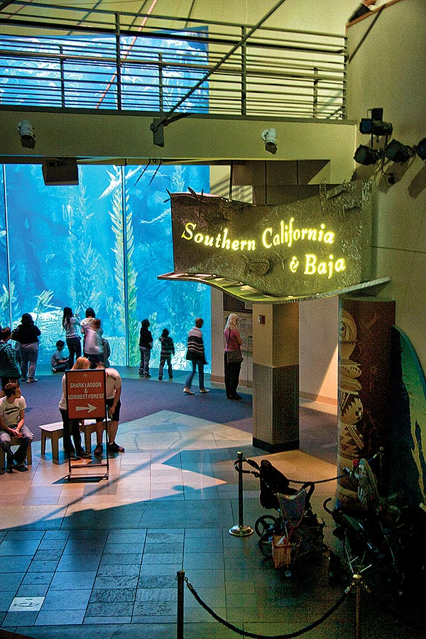 Entrance to Southern California Baja Gallery showing the Blue Cavern exhibit in the background.