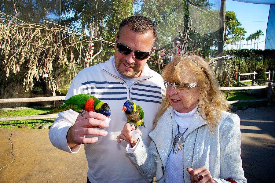 two people with lorikeets on their hands