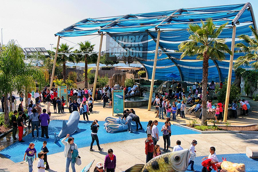 Shark Lagoon exhibit filled with people