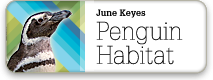 June Keyes Penguin Habitat
