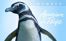 Aquarium Member Card displaying a penguin