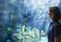 Aquarium Women in STEM (Part 1)