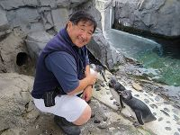 Hugh and Chirping Penguin Chick - thumbnail