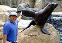How to Train a Sea Lion (and a Rabbit)