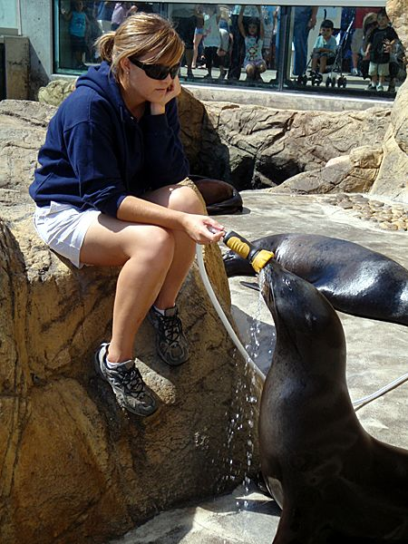 "GETTING ""THIGGY"" WITH MILO THE SEA LION"