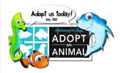 New Adopt-an-Animal Opportunities