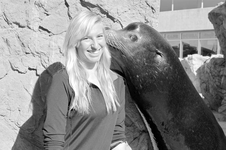 Pinniped Encounters at the Aquarium of the Pacific