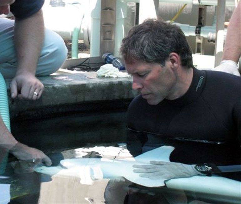 Meet Steve Blair, One of the Aquarium's Original Aquarists