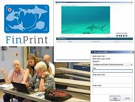 Global FinPrint graphic links to Global FinPrint