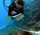 Scuba diver underwater collecting data