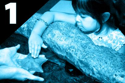Preschooler touches a bat star