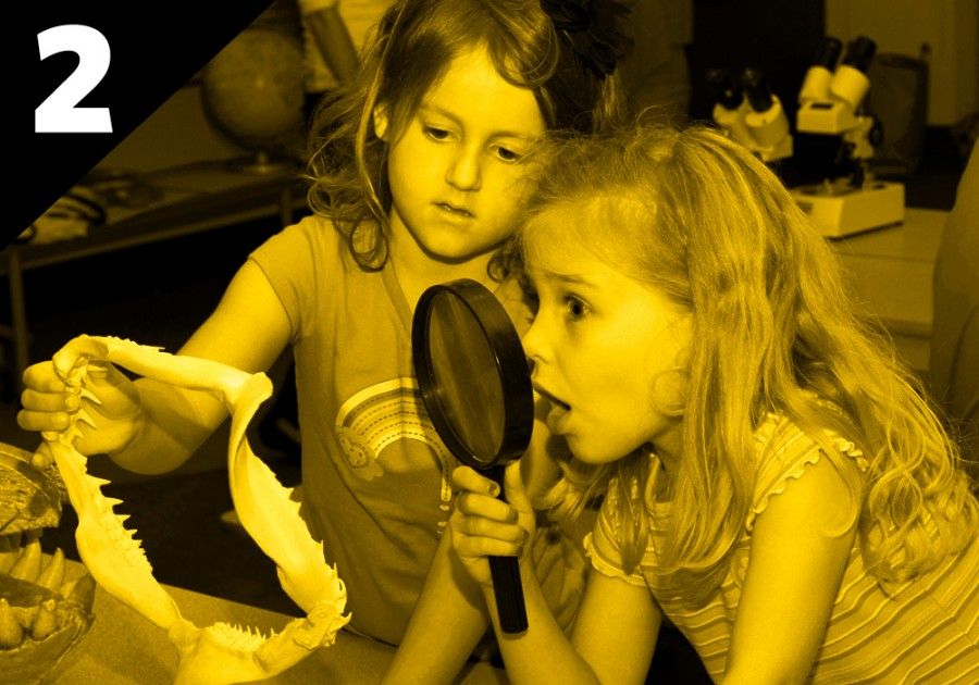Two girls investigate shark jaws with magnifying glass - lightbox