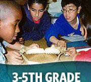 Middle school kids looking at shark jaw with 3-5th grade wording
