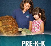 Educator and child with PreK-K wording