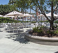 Tables with umbrellas and planter