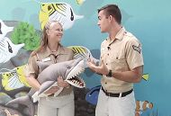 Two educators holding a shark stuffed animal links to Sensational Sharks