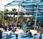 Shade structure and people in Shark Lagoon