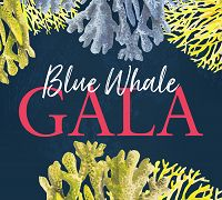 Links to Blue Whale Gala