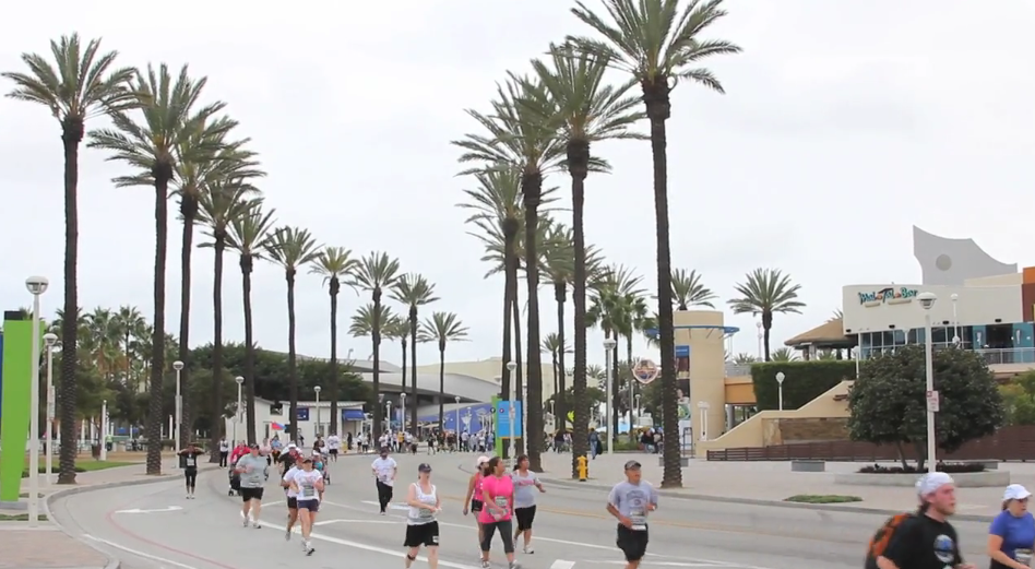 5k runners jog palm-tree lined street - lightbox