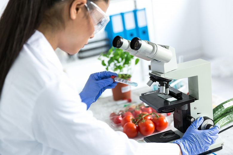 Woman in lab coat looks at samples in a microscope with fresh produce in the background. - popup