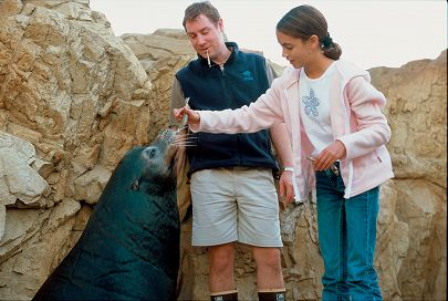 Sea lion with girl and trainer