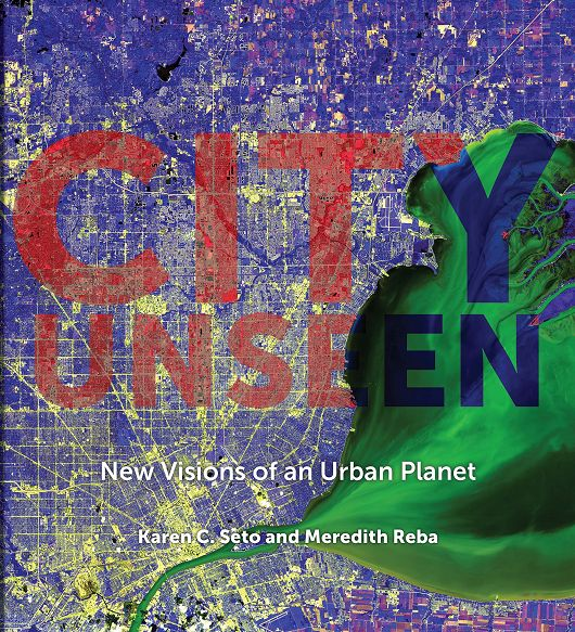 City Unseen: New Visions of an Urban Planet Book Cover - popup