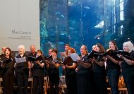 Long Beach Chorale to Premiere Chorale of the Jellies at Concert Featuring Ocean-Themed Music