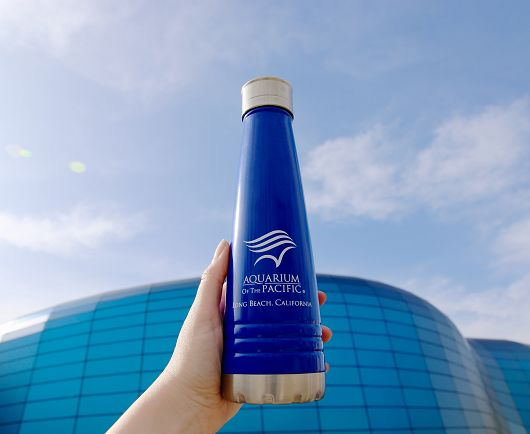 Reusable Water Bottle Held In Front of Pacific Visions Wing - popup