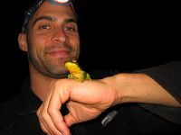 SAVE THE FROGS! Translating Science Into Action