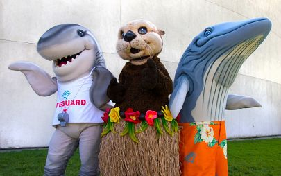 Shark, Otter, and Blue Whale Aquarium mascots in summer attire