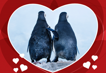 Penguins_in_heart.png