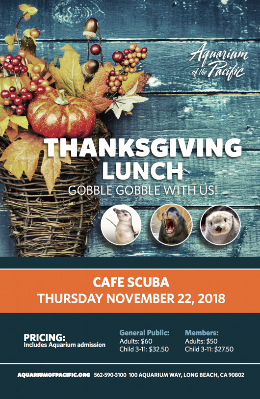 Thanksgiving Lunch Flyer 2018 - popup