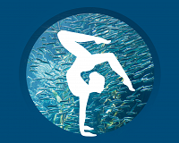 Links to Yoga at the Aquarium