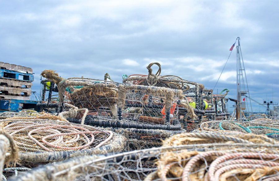 Crab pots and rope - lightbox