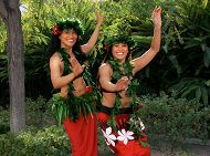 Celebrate the Cultures of the Pacific Islands During the 13th Annual Pacific Islander Festival