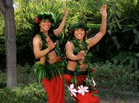 Links to Pacific Islander Festival