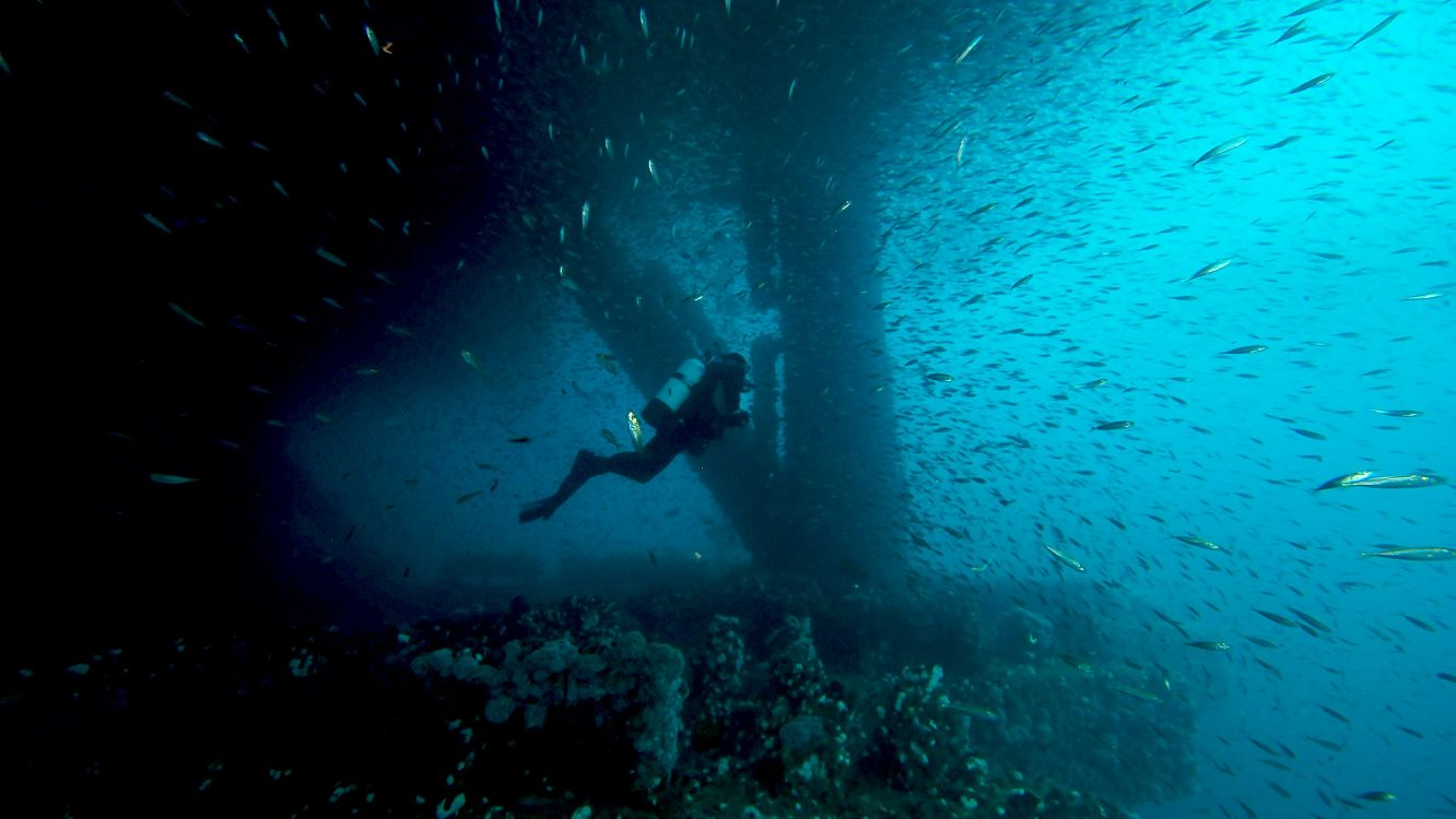Diver swims by underwater oil rig surrounded by fish - lightbox
