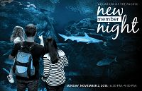 New Member Night